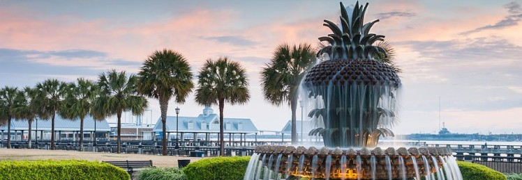 cropped-charleston-south-carolina-downtown-waterfront-park-pineapple-fountain.jpg